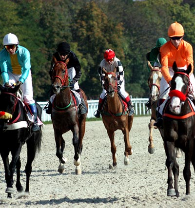 Pimlico Race Track